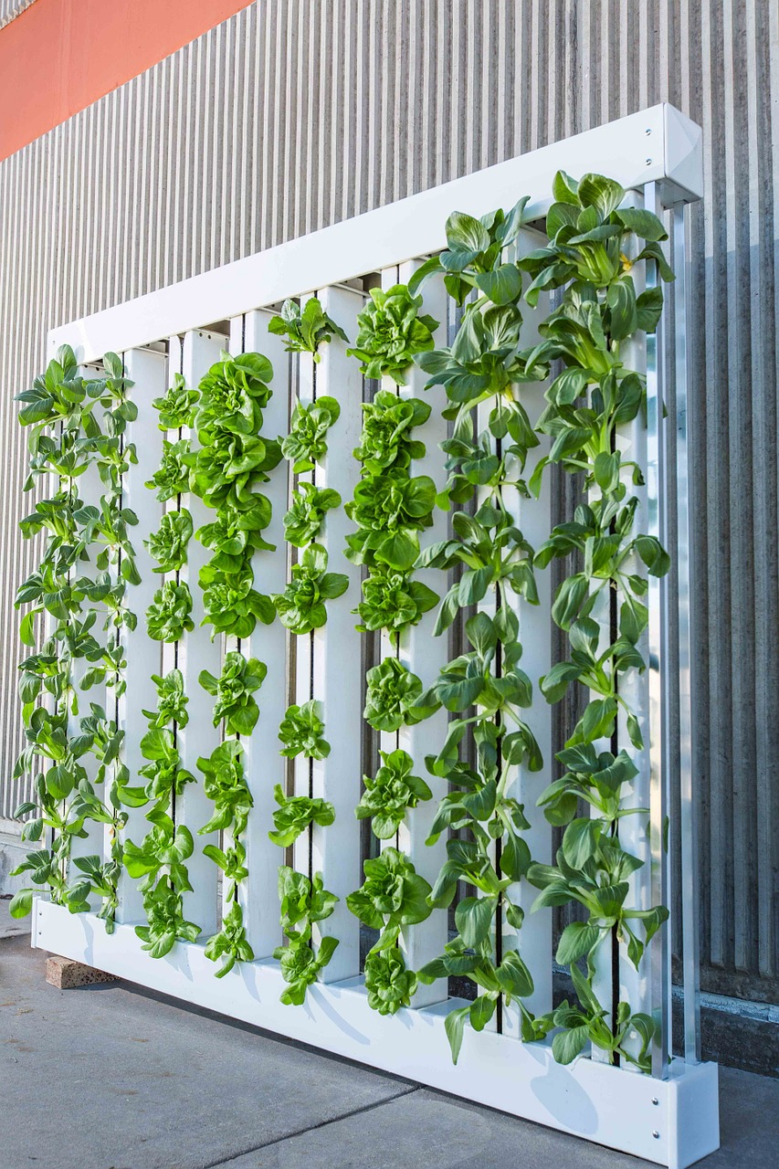 August 15 – Next Gen and Urban Agriculture