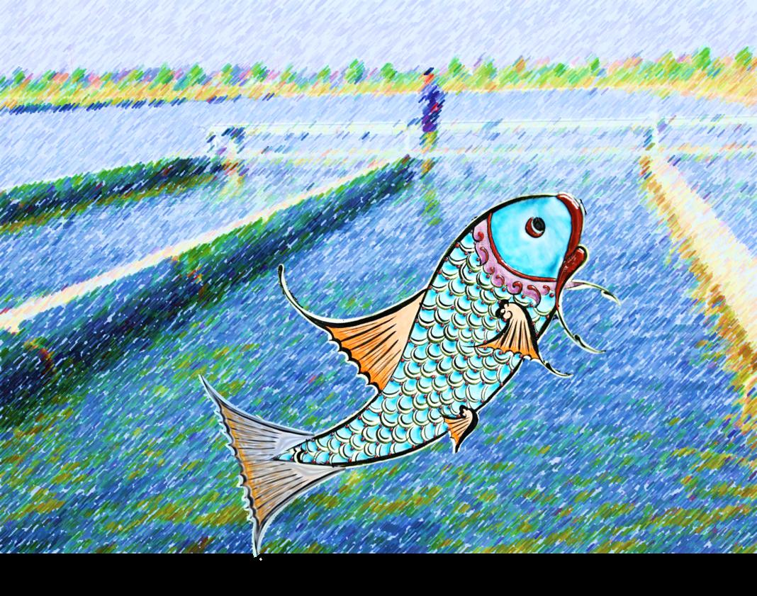 Sept 16—IPRS: The Aquaculture Revolution!